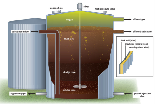 "Biodigesters function much the same way as mammalian digestion. Liquefied organic waste (""substrate"") is fed into a sealed tank that's insulated to maintain a consistent warm temperature. Anaerobic microorganisms degrade the material to produce a mixture of gases and a residual sludge (""digestate""). The composition of the substrate is an important determinant of the quality of the gas and digestate.© Jane Whitney"
