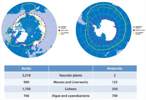 Extent Of Contemporary Arctic And Antarctic Habitats Fo Open I