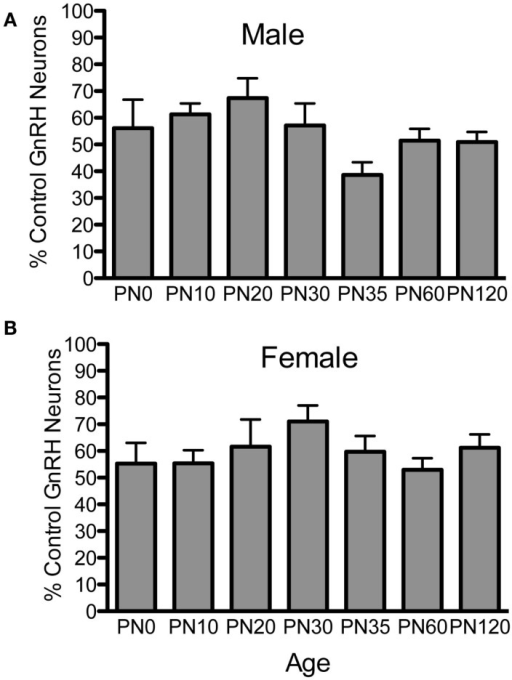 Percent GnRH neurons in Fgf8 Het male (A) and female (B) mice. The number of GnRH neurons in each Fgf8 Het mouse was normalized against the mean of GnRH neurons in the same age and sex group. Each bar = mean ± SEM; N = 5–6. No differences among age groups were observed in either male or female Fgf8 Het mice.