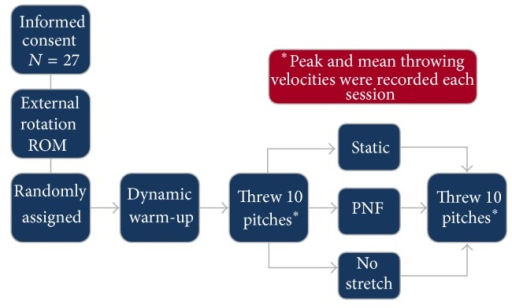 Each session was conducted according to the following flowchart. Subjects were randomly assigned to a stretching condition each session. The procedure was repeated over three different testing days until the subject completed all stretching conditions. Peak and average velocities were recorded each time.