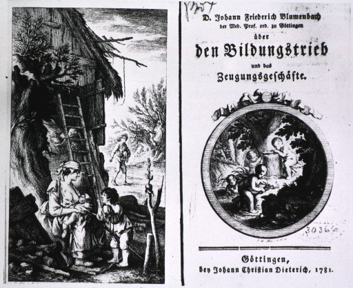 <p>Text and medallion illustration on title page; cherubim collect materials for some concoction, one cherub is cutting the tail off a salamander; frontis. shows a woman breast feeding an infant; a man sowing seed; a child playing; and a grafted fruit tree.</p>