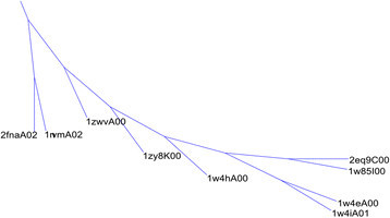 A phylogenetic tree illustrating the CATH domains from 4.10.320.10 and 1.10.8.60. A portion of the full phylogenetic tree. This subtree corresponds to the 4.10.320.10 cluster and the smaller 1.10.8.60 cluster. 2fnaA02 and 1nvmA02 are from 1.10.8.60; all other structures are from 4.10.320.10.