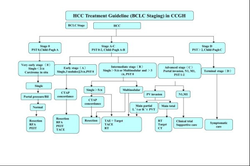 Schematic representation of the institutional guidelines for the treatment management of HCC patients.