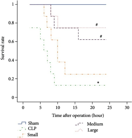 Effect of dexmedetomidine on survival curves of septic rats induced by CLP. Sham: sham operation group; CLP: cecal ligation and puncture operation group; Small: 5 μg/kg dexmedetomidine treatment group; Medium: 10 μg/kg dexmedetomidine treatment group; Large: 20 μg/kg dexmedetomidine treatment group. n = 8. The survival rate at 24 h after operation was analyzed. *P < 0.01, versus sham group; #P < 0.01, versus CLP group.