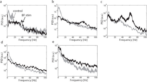 Examples Of V1 Lfp Power Spectral Density Psd Changes Open I