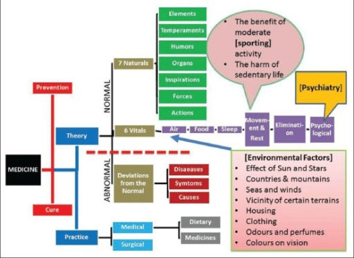 A simplified schematic outline of the classification of | Open-i