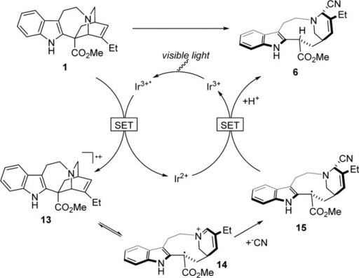 Proposed Catalytic Cycle for Fragmentation