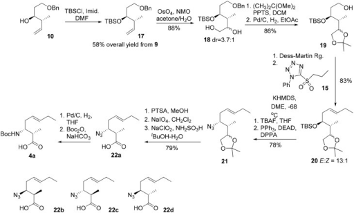 Revised route for the synthesis of 3-amino-2-methyl-5E-octenoic acid 4.