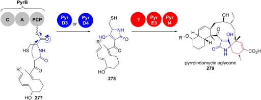 Tetramate formation in pyrroindomycin aglycone (279) biosynthesis [213–215].