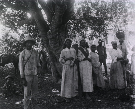 <p>View of civilians standing under a tree.</p>