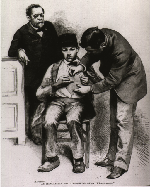 <p>Louis Pasteur observes as a young boy receives an inoculation for hydrophobia.</p>