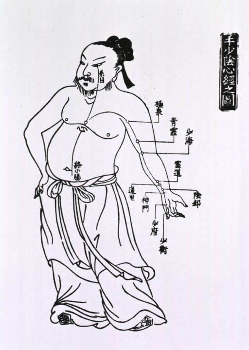 <p>Human figure, full length, left pose with acupuncture points indicated.</p>