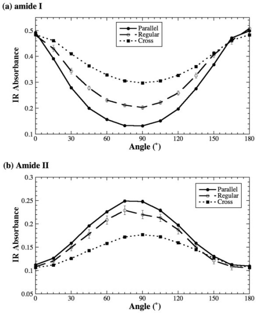 Absorption anisotropy of amide I (a) and amide II (b) of tendon in the regular, parallel and cross sections.