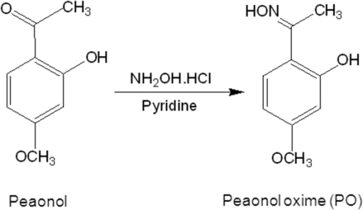 Chemical structure of paeonol oxime.Paeonol oxime (PO) (1-[2-hydroxy-4-methoxy phenyl] ethanone oxime) was synthesized from paeonol.