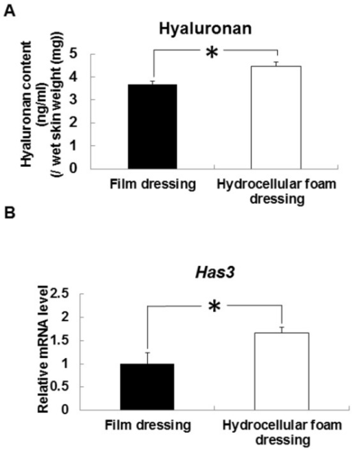 Effects of hydrocellular foam dressing on level of hyaluronan and Has3 mRNA expression in periwound epidermis.Hyaluronan levels in periwound epidermis (A) were measured using a QnE hyaluronic acid ELISA assay. Has3 mRNA levels in periwound epidermis (B) were measured by quantitative PCR and expressed as values relative to those of GAPDH. Bars are expressed as mean ± SE (n = 4, 5). *p < 0.05 indicates values that are significantly different from the side of film dressing in rat skin.