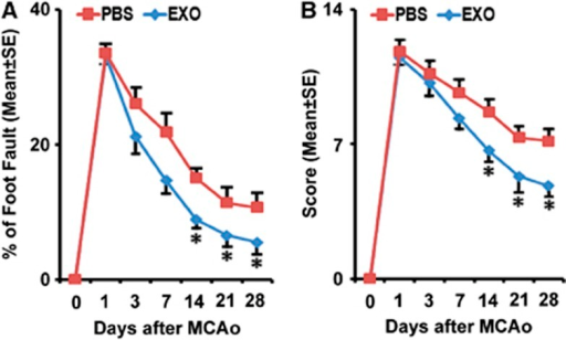 Exosome treatment improves neurologic outcome. Foot-fault test (A) and modified neurologic severity score (B) data show that rats that received exosomes have significant functional enhancement starting 2 weeks after treatment, respectively. *P<0.05, mean±s.d., n=6/group. MCAo, middle cerebral artery occlusion; PBS, phosphate-buffered saline.