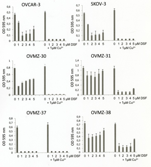 Effects of disulfiram and copper supplementation on cell viability of ovarian cancer cellsSix ovarian cancer cell lines were treated for 72 h with 0-5 μM disulfiram (DSF) in the absence or presence of 1 μM copper chloride (Cu2+) and analyzed for cell viability by the MTT assay.