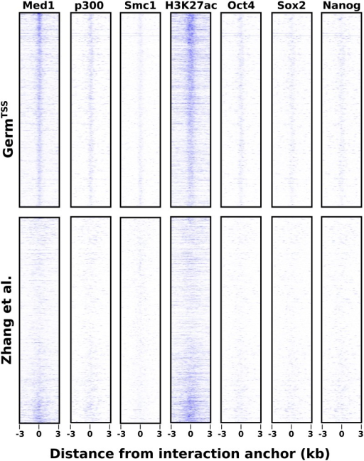 Visualization of ChIP-Seq data in regions detected to interact with TSSs.The top row of boxes contains TSS-distal, TSS jointly occupied regions identified by GermTSS. The bottom row of boxes contains the corresponding regions from [27]. The 6 kilobase regions are centered on the estimated eloc or midpoint and are ordered by the significance associated with the interaction. Each column represents data from a ChIP-Seq dataset that is associated with active enhancers.