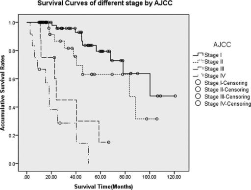 Survivals for p-NETs in different stages by the AJCC Staging Manual (seventh edition). Differences were statistically significant when comparing stage I with stages III and IV (P < 0.005 and P < 0.005, respectively), as well as stage II with stages III and IV (P = 0.018 and P < 0.005, respectively), whereas those of stage I with stage II and stage III with stage IV did not present notable differences (P = 0.085 and P = 0.144, respectively). AJCC = American Joint Committee on Cancer, p-NETs = pancreatic neuroendocrine tumor.