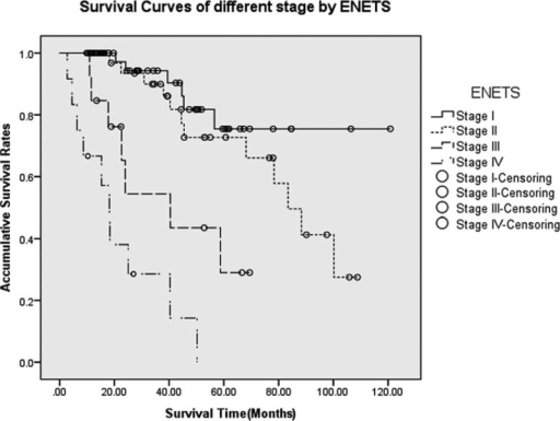 Survivals for p-NETs in different stages by the ENETS classification. Differences between stage I and stages III and IV were statistically significant (P = 0.001 and P < 0.005, respectively), as well as those between stage II and stages III and IV (P = 0.009 and P < 0.005, respectively). Meanwhile, there was no statistically obvious difference between stage I and stage II (P = 0.207), whereas notable difference was detected between stages III and IV (P = 0.031). ENETS = European Neuroendocrine Tumor Society, p-NETs = pancreatic neuroendocrine tumor.