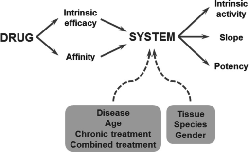 The relationship between drug concentration and the intensity of the biological response depends on drug- and biological system specific factors. Drug specific properties are the target binding affinity and the intrinsic efficacy, which govern the target activation. A biological system-specific transducer function describes the relation between the target activation and the effect. Reproduced from: van der Graaf and Danhof [67]