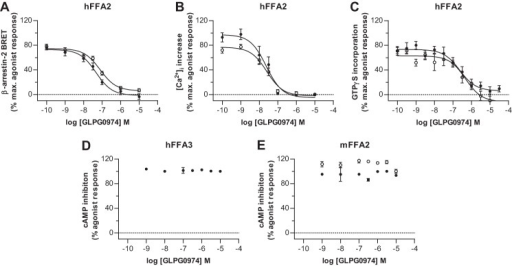 GLPG0974 inhibits the actions of C3 and Cmp 1 at hFFA2. hFFA2-eYFP and β-arrestin-2 Renilla luciferase were co-transfected transiently into HEK293T cells. The capacity of GLPG0974 to inhibit interactions between hFFA2-eYFP and β-arrestin-2 Renilla luciferase induced by an approximately EC80 concentration of C3 (3 mm) (filled symbols) or Cmp 1 (10 μm) (open symbols) was then assessed (A). Flp-InTM T-RExTM 293 cells stably harboring hFFA2-eYFP at the Flp-InTM T-RExTM locus were induced to express the receptor. The capacity of GLPG0974 to inhibit elevation of [Ca2+]i produced by EC80 concentrations of C3 or Cmp 1 is shown (B). Membranes from such induced cells were used to assess the ability of GLPG0974 to inhibit the binding of [35S]GTPγS stimulated by EC80 concentrations of C3 (300 μm) and or Cmp 1 (1 μm) (C). Although C3 inhibited forskolin-induced cAMP production in membranes of Flp-InTM T-RExTM 293 cells induced to express hFFA3-eYFP, GLPG0974 did not inhibit this (D). Moreover, unlike at hFFA2, GLPG0974 was unable to inhibit either C3 (filled symbols) or Cmp 1 (open symbols)-mediated inhibition of forskolin-induced cAMP production in membranes from Flp-InTM T-RExTM 293 cells induced to express mFFA2-eYFP (E).