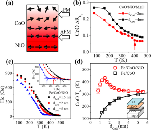 Study Of Afm Order Propagation In Coo Layera Schemat Open I