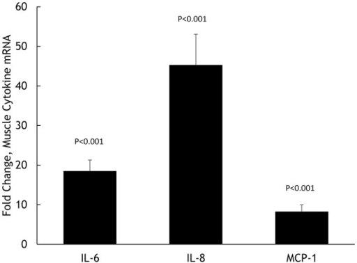 Fold change in skeletal muscle mRNA expression for IL-6, IL-8, and MCP-1 in N = 20 cyclists in response to 75-km cycling.