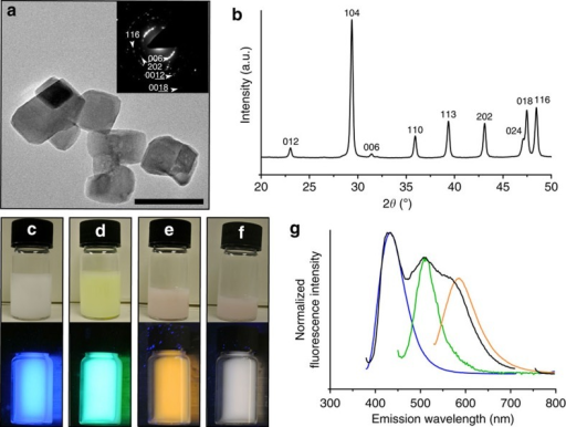 Fluorescent dye/calcite composite nanoparticles.(a) Representative TEM micrograph of calcite nanoparticles occluding GREEN and selected-area electron diffraction pattern (inset). (b) Powder X-ray diffraction analysis of calcite nanoparticles demonstrating wide-line broadening associated with small crystalline domain size (τ=53 nm). (c–f) photographs of ethanolic suspensions of fluorescent calcite nanoparticles containing (c) BLUE, (d) GREEN, (e) RED and (f) dye mixture under normal light (top) and ultraviolet light (365 nm, bottom). (g) Emission spectra of ethanolic suspensions of calcite nanoparticles occluding BLUE (blue, λex=360 nm), GREEN (green, λex=430 nm), RED (orange, λex=512 nm) and dye mixture (black, λex=360 nm; section at ∼700–760 nm removed due to signal from excitation light at 2λex). Scale bar, 100 nm (a).