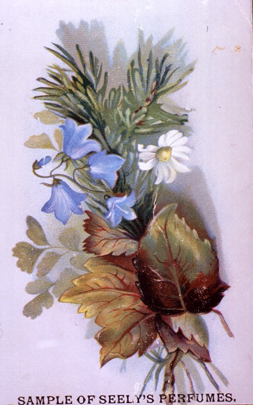 <p>Insert card accompanying a sample of Seely's Perfume.  Visual motif:  Floral arrangement.</p>