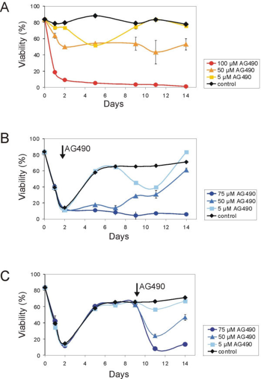 Effect of Jak inhibitor AG490 on survival of nilotinib-insensitive cells in the presence of stroma. 3 × 106 lymphoma cells were seeded in 6 well tissue culture plates with irradiated MEFs and further treated with 5, 50 or 100 μM AG490 (A) or 20 nM nilotinib (B, C), respectively. In (B) and (C), in addition to nilotinib, treatment with 5, 50 or 75 μM AG490 was initiated as indicated by an arrow. As a control for the effect of AG490, single treatment with DMSO only (A) or 20 nM nilotinib (B, C) was analyzed, respectively. Fresh drug was added (depending on proliferation of the leukemia cells) every second or third day with the change of medium. Viability was assessed by propidium iodide uptake using a FACScan. Each point represents the average of triplicate values ± SEM.