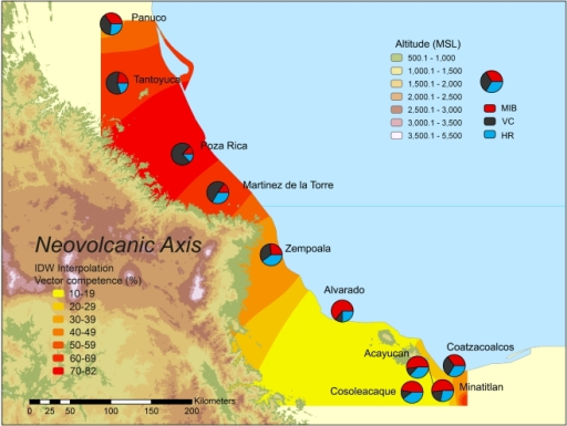 Map of the coastal plain of Veracruz indicating the locations of the 10 Aedes aegypti sampling sites relative to the Neovolcanic Axis.Pie charts indicate the proportion of mosquitoes that were vector competent (black), midgut negative (red) and head negative (green). The VC rates were interpolated by Inverse Distance Weighting and geographic areas are colored from yellow to red according to predicted vector competence rates. R2 = 0.66 and root mean square error = 9.6.