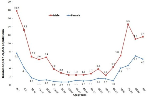 The age-specific incidence of meningitis based on gender (incidences averaged over seven years). The values in the lines present the actual incidence values.