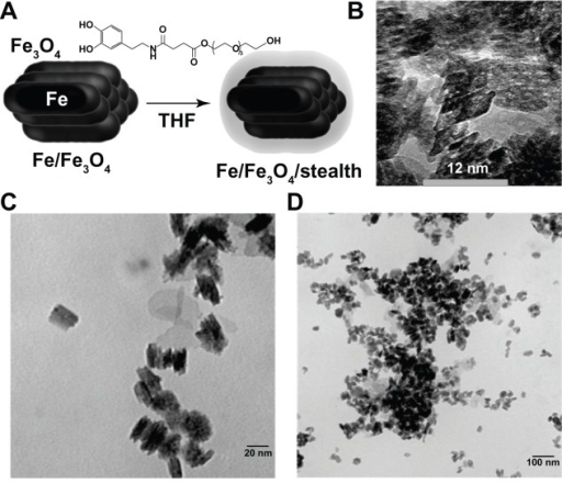 core shell iron oxide zinc sulfide zns fe2o3 synthesis Keywords: magnetic iron oxide, core/ shell nanoparticles, zns introduction in the past decade or so, core-shell structured nanoparticles the wet chemical synthesis of γ- fe2o3 nanoparticles was based on hydrolysis of fe3+ and fe2+ salt in the presence of urea and naoh with the following.