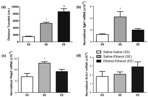 Sgk1 mRNA expression following ethanol sensitization.Behavioral sensitization followed by Q-rtPCR analysis of Sgk1 and Nr3c1. Panels show: (a) Total locomotor activity (cm/10min.) for saline only (SS), acute ethanol (SE) and ethanol sensitized (EE) groups. * p < 0.05 versus chronic saline (SS), # p < 0.05 versus acute ethanol (SE) (b) Sgk1 levels in SS, SE and EE treated mice 4 hours following following saline (SS) or ethanol (SE, EE) treatment on day 14. * p < 0.05 versus SS and EE treated animals (c) Nr3c1 levels in SS, SE and EE treated mice as in panel b.