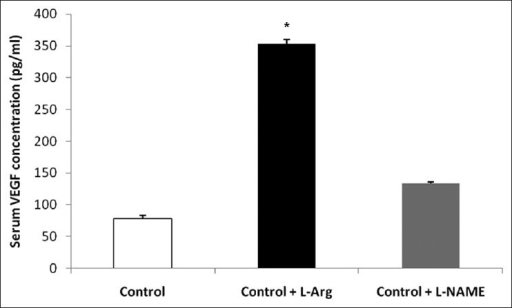 Serum VEGF level (pg/ml) at the end of study (*P < 0.05 compared with other groups)
