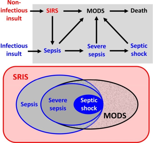 Relationship between systemic inflammatory response syndrome (SIRS), sepsis, severe sepsis, septic shock, and multiple organ dysfunction syndrome (MODS).Upper panel: relationship according to infectious etiology. Lower panel: Venn diagram.