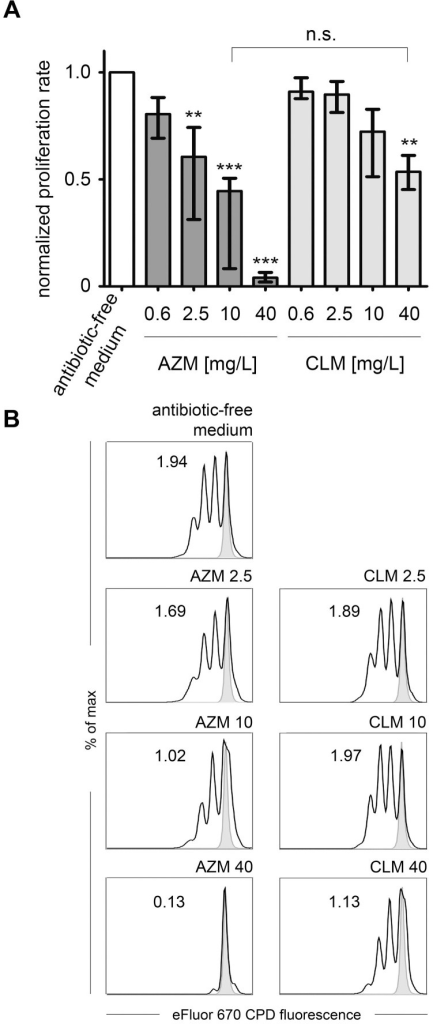 Suppression of CD4+ T-cells proliferation following activation.(A) Median proliferation values (with quartile 1 and quartile 3) normalized to the respective antibiotic-free medium control from thymidine incorporation assays from CD4+ T-cells from ten apparently healthy volunteers; if not otherwise indicated, all statistical comparisons relate to the antibiotic-free medium control; n.s. not significant. (B) Proliferation of eFluor670 CPD labeled CD4+ T-cells 96 hours after stimulation in the presence of antibiotic-free medium or the indicated concentrations of AZM and CLM; numbers indicate division index; one representative experiment (n = 4) is depicted.