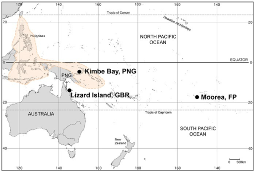 Map of the Indo-Pacific region showing the locations of the three study sites.The area shaded in color delineates the Coral Triangle biodiversity hotspot. Map modified from the U.S. CIA Oceania physical map (https://www.cia.gov/library/publications/the-world-factbook/index.html) and is for representative purposes only.