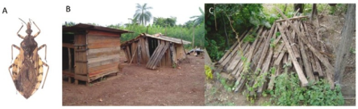 peridomestic ecotopes for Triatoma sordida (A). Wooden chicken coops (B)and wooden piles (C) presented in the peridomestic area of localities in themunicipality of Posse, state of Goiás, Brazil.