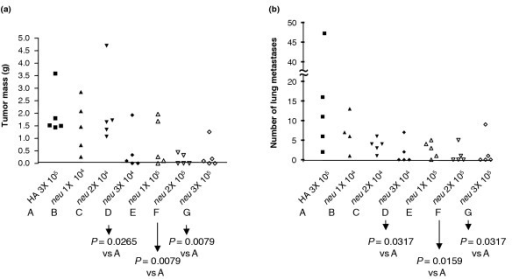 Minimal effective vaccine dose in two tumor prevention models. Groups of four or five mice were vaccinated once, twice or three times (1X, 2X, or 3X) at 2-week intervals with virus-like replicon particles (VRP)-neu or VRP-hemagglutinin (HA) (104 IU or 105 IU). Two weeks after the final vaccination, the mice were challenged with A2L2 cells injected into a mammary fat pad or intravensouly. The mice were killed 5 weeks after the tumor challenge. (a) The mass of the mammary tumors, if present, was determined in the mammary fat pad prevention model group, and (b) the number of surface metastases on the lungs was determined in the experimental lung metastasis prevention model group.