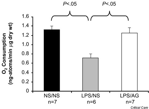 Effect of lipopolysaccharide (LPS) on ileal mucosal O2 consumption. Rats in the NS/NS group were injected at T = 0 hours with normal saline (NS) and were treated with NS. Rats in the LPS/NS group were injected with LPS (5 mg/kg) at T = 0 hours and were treated with NS. Rats in the LPS/AG group were challenged with the same dose of LPS and treated with aminoguanidine (30 mg/kg per dose at T = 1, 3 and 6 hours). Ex vivo O2 consumption was measured at T = 8 hours. Adapted from [24] with permission.