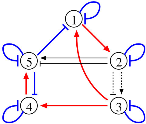 A sample of the network structure inferred by the proposed method. Colored bold lines: true-positive regulations. Thin lines: false-positive regulations. Dotted lines: false-negative regulations.