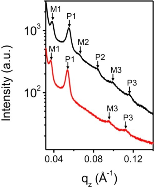 qz profiles at thebeginning (4800 s, ϕP = 0.95, lower red curve) andat the end (7200 s, ϕP = 1.0, upper black curve)of the second regime of drying (V). The curves are shifted verticallyfor better visibility. M1, P1, M2, P2, M3, and P3 mark the DBSs.