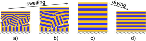Schematic structures of the thin film duringswelling and drying:(a) as-prepared film at t = 0 s, (b) swollen filmat t = 828 s, (c) swollen film at t = 1350 s, (d) subsequently dried film at t = 7200s.
