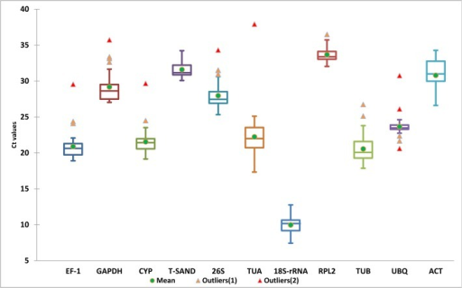 Distribution overview of expression levels (Ct) of the different genes.Boxplot representation of raw Cq values obtained from amplification curves. The box indicates the 25th and 75th percentiles. Whiskers represent the maximum and minimum values, the thin line within the box marks the median, mean (thick dot) and outliers (Δ).