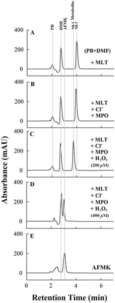 HPLC analysis shows MLT oxidation thereby preventing MPO heme destruction and generation of free iron.A) HPLC trace for MLT (elution time 3.98 min) dissolved in DMF (elution time 3.31 min) and phosphate buffer (elution time 2.48 min). B) Addition of MPO and Cl- causes no significant change in MLT peak intensity and/or retention time. C) Addition of H2O2 (sequential addition of 20 μM, total 200 μM) results in a significant shift in MLT retention time elution time (3.71 min) as well as the appearance of a small peak around 3.57 min. D) Increasing levels of H2O2 (400 μM) resulted in the domination of the MLT metabolite eluted at 3.57 min showing the retention and absorbance properties of AFMK (elution time 3.57 min) as shown in panel (E).