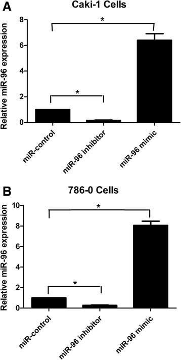 miR-96 expression changes in Caki-1(a) and 786-O (b) cells following transfection with miR-96 inhibitor or miR-96 mimic compared to miR-control-transfected cells. miR-96 expression in RCC cell lines was detected by quantitative RT-PCR after transfection with the indicated constructs for 24 h (*p < 0.05)
