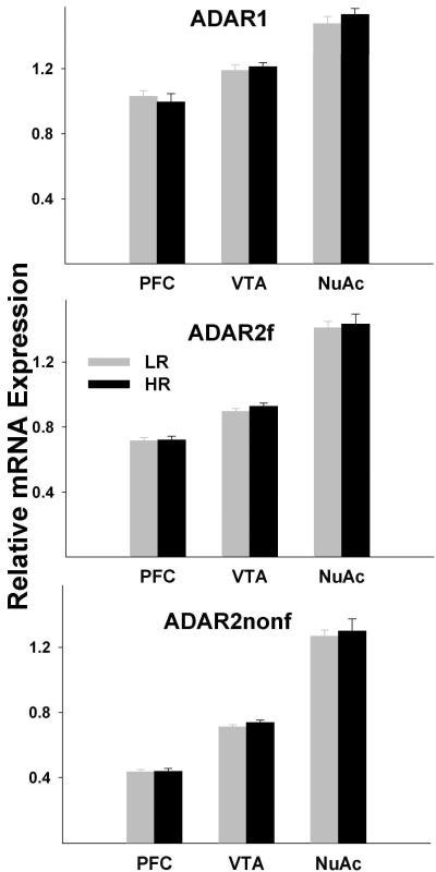 Analysis of the ADAR1 and ADAR2 mRNA expressionmRNA expression was measured by qPCR. Shown are Means±SEM. Two different TaqMan assays were employed to distinguish between the ADAR2 transcripts that encode functional (ADAR2f) and truncated non-functional (ADAR2nonf) proteins. ADAR1, ADAR2f, and ADAR2nonf expression levels were significantly different between pairs of regions (all p values <0.0001), but did not differ between HRs and LRs in any region.