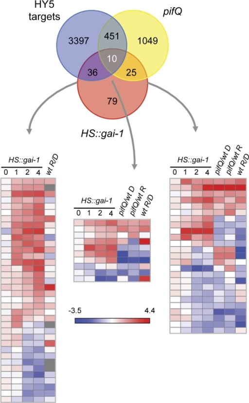Meta Analysis Comparing Microarray Data From Hsgai 1 Open I